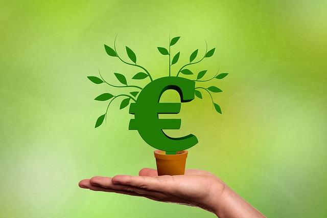 růst eura