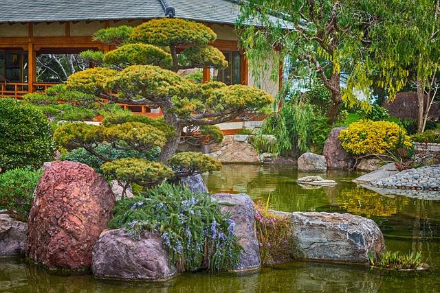 japonské zahrada s bonsajemi