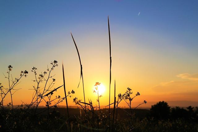 zapadající slunce v krajině